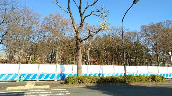 鶴間公園の森の遊び場の遊具が大きくなっていました!