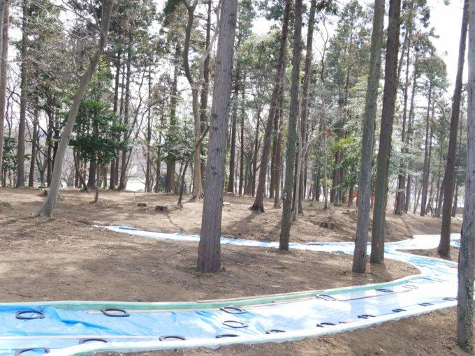 鶴間公園の雑木林の中に遊歩道がお目見え