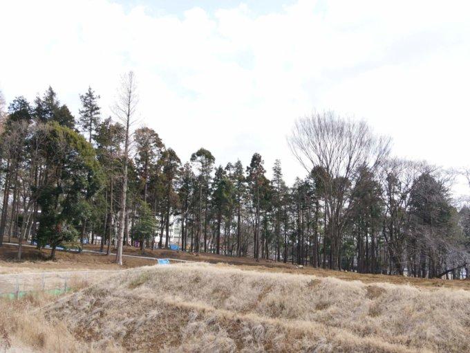 鶴間公園の多目的広場付近からの眺め