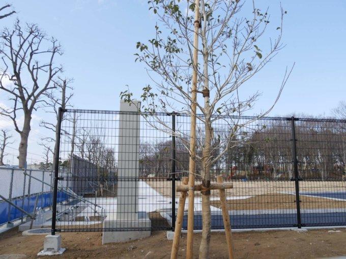 鶴間公園南側も綺麗に整備されています。