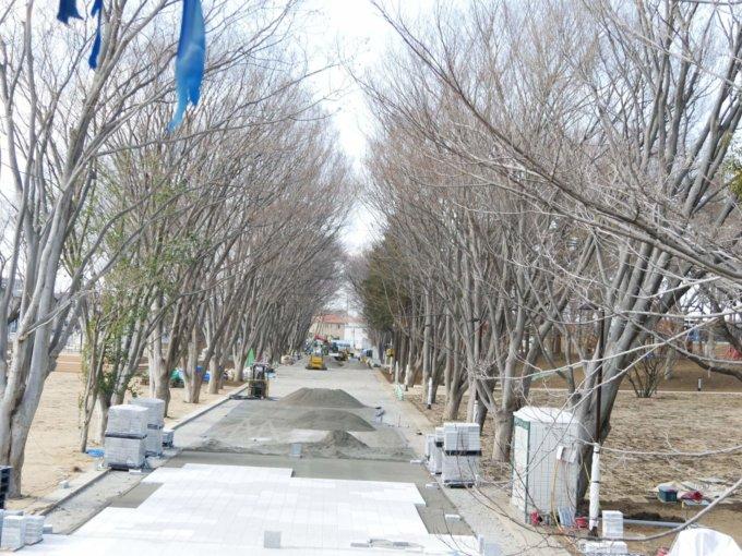 鶴間公園の水道道も整備されています。