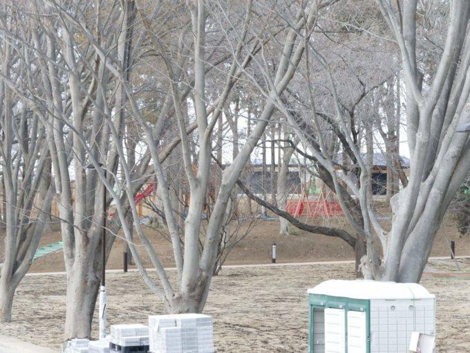 鶴間公園の水道道から眺める森の遊び場