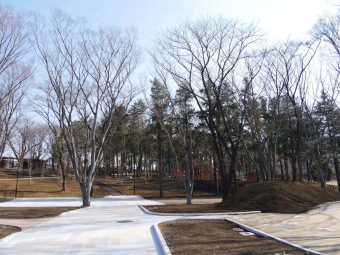南町田鶴間公園コミュニティガーデン