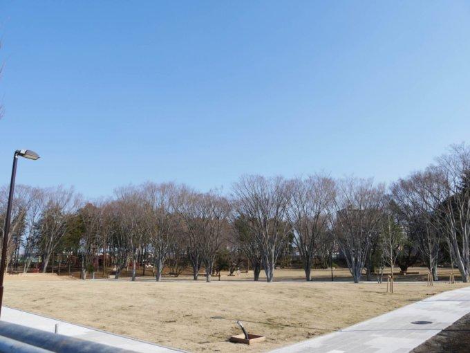 南町田鶴間公園にぎわい広場