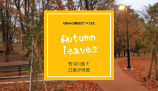 【南町田の紅葉スポット】秋の鶴間公園が美しいので紹介させていただきます