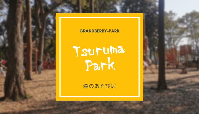南町田の鶴間公園、森のあそびば