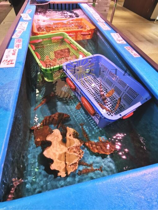 南町田グランベリーパークの魚屋「中興商店」のいけす